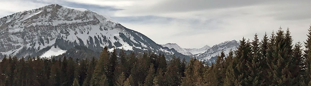 606 Finsterwald-Wissenegg-Winterwanderweg