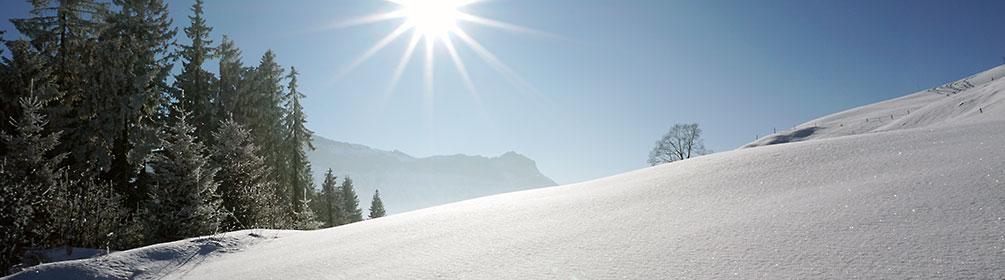 610 Winterwanderweg Marbachegg–Bumbach