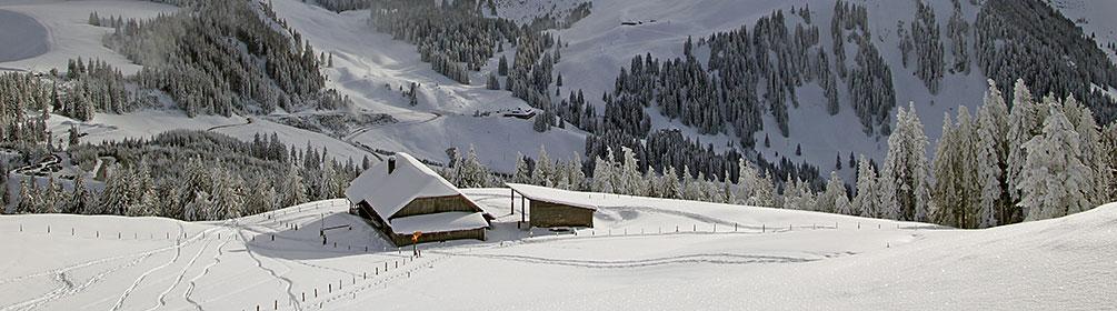 Selibüel-Winterwanderweg