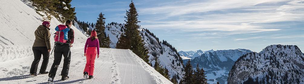 759 Winterwanderweg Oberbärgli