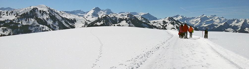 Sparenmoos-Winterwanderweg