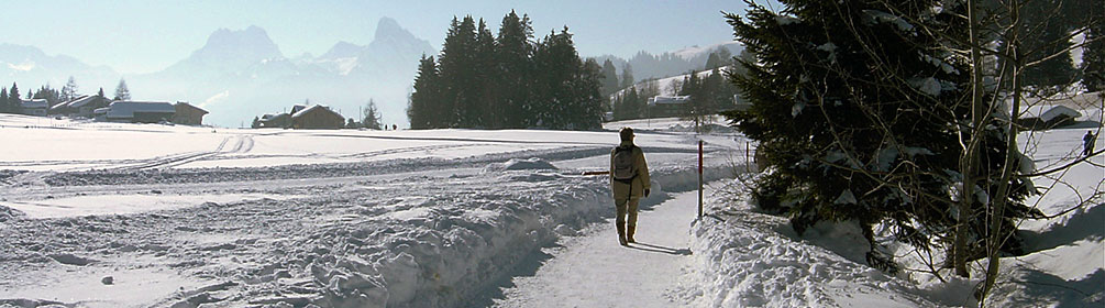 Saanenmöser-Schönried-Winterwanderweg