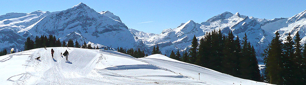 Lauenensee-Winterwanderweg