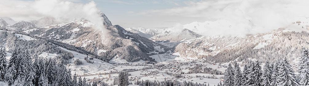 775 Horneggli-Hornberg-Winterwanderweg