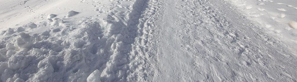 870 Winterwanderweg Bodmen